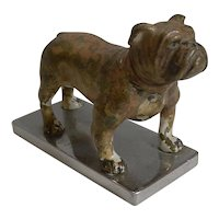 Antique Vienna Cold Painted Bronze Boxer Dog c.1900 - Car Mascot