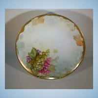 VINTAGE 8 1/2 Inch Aabsburg Austria BT Crown Painted Plate