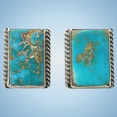 Native American Turquoise and Sterling Screw Back Earrings Gorgeous Stones