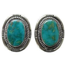 Navajo Native American Turquoise Screw Back Earrings Hallmarked Sterling Gorgeous Stones