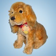 Vintage Steiff Mohair Revue Susi Cocker Spaniel Dog Sitting 7 Inch with Tag