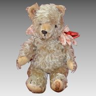 Vintage Shaggy Mohair German Teddy Bear Circa 1930-1950