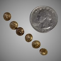 6 Tiny Victorian Brass Buttons for Doll Clothes Circa 1900