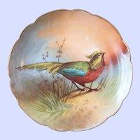 Limoges L.R.I  France Bird Cabinet Plate Artist Signed