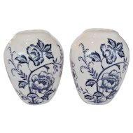 Blue and White Bulb Shaped Salt and Pepper Shakers