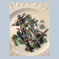 John James Audubon, Birds of America, Pileated Woodpecker Plate