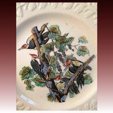 John James Audubon, Birds of America, Pileated Woodpecker Plate