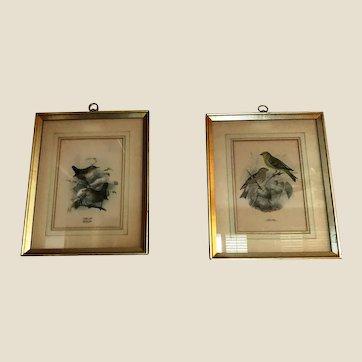 2 Vintage Framed Bird Prints