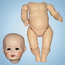 Very Small Antique Bisque Doll Head & Composition Body