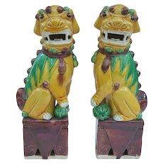 Excellent Antique Famille Jaune Foo Dogs, 9.5""