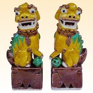 Small Pair Of Antique Famille Jaune Sancai Foo Dogs, Fu Dogs, Fu Lions