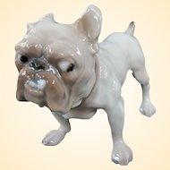 A Rare Little Bing & Grøndahl Porcelain Bulldog