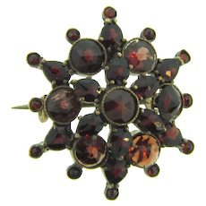 Vintage early Bohemian garnet Scatter Pin