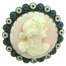 Vintage early cameo Scatter Pin in sterling silver frame with enamel