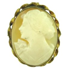 Vintage shell Cameo smaller Brooch in gold filled frame