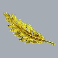 Signed Coro vintage gold tone leaf Brooch