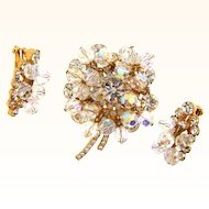 D&E Juliana crystal rhinestone and bead Brooch and clip on earrings