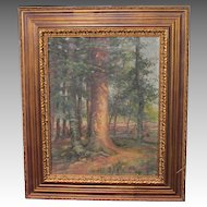 Mary Ivins Cunningham LISTED PA painter oil canvas of forest ~ artist exhibited PAFA