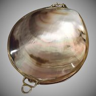 Shell Coin Purse Vintage Brass Collar Clasp Hinge Iridescent Trinket Box