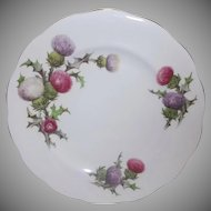 Queen Anne Dundee Thistle Salad Plate Vintage Fine Bone China England