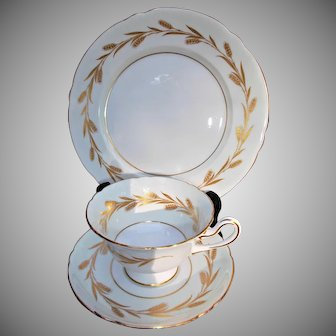 Shelley Fine Bone China Cup Saucer Plate Vintage Golden Harvest Trio
