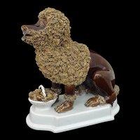 Large Poodle Barboncino Dog White Plinth Base Brown Figure