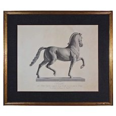 Cavallo / Horse Engraving after Antonio Canova Framed Large Equestrian - Red Tag Sale Item