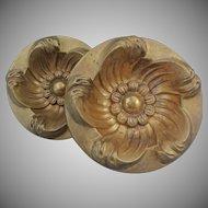 Pair of Gilt Bronze Curtain Tiebacks Circular Floral Design