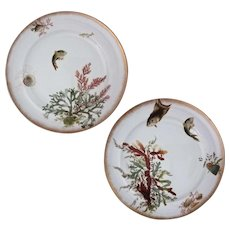 Pair George Jones Fish Seaweed Sea Shell Porcelain Plates - c. 19th Century, England