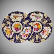 Pair Antique Coalport Cobalt Gilt Bird Fruits Flowers Wall Cabinet Plates - circa 1815 to 1825, England