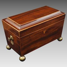 Antique Regency Tea Caddy Triple Compartment Mahogany Brass Ball Feet - 19th Century, England