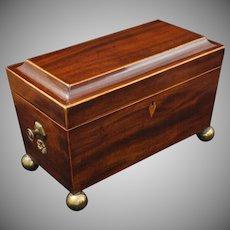 Antique Regency Tea Caddy Triple Compartment Mahogany Brass Ball Feet - 19th Century, England