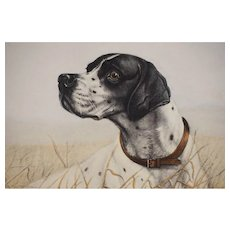Pointer Dog Danchin Pencil Signed Numbered 145/500 Etching Limited Edition - c. 1930's, France