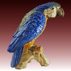 Large Parrot Porcelain Figurine CV79 Goebel - 20th Century, Germany