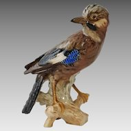 Large Jay Porcelain Figurine CV94 Goebel - 20th Century, Germany