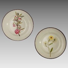 Pair English Pearlware Creamware Botanical Plates - c. 1750 to 1820, England