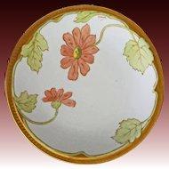Limoges Plate Signed Amedee Porcelain Gilt Floral Botanical M de Mavaleix - c. 1900's France