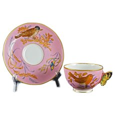 Kerr Binns Worcester for Tiffany & Co. Cabinet Cup Saucer Pink Birds Insects Ornithological Antique - circa 1858, England