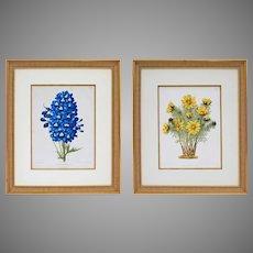 Pair Framed Botanicals Antique Chromo Lithographs - 1868, Netherlands