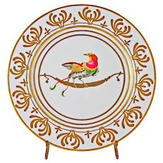 Alberto Pinto Exotic Bird Buffet Plate Or des Airs Limoges Large Charger Platter Limoges France Porcelain Modern