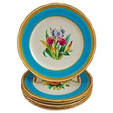Set 6 Minton Botanical Turquoise Gilded Dessert Set Service Plates a6802 Antique - 1870 cipher, England