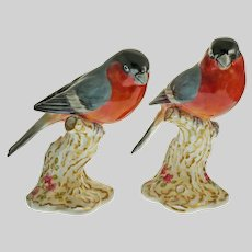 Two Royal Worcester Bullfinch Bird Figurines Perched on Branch Porcelain - 20th Century, England