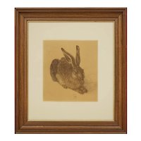 Field Hare after Durer Framed Print - 20th Century