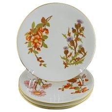 Set Four Arts & Crafts Royal Worcester W 1701 Botanical Plates - 1901, England