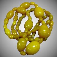 Amber Butterscotch  Egg Yolk Bead Large Necklace