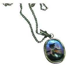 Butterfly Wing Reverse Painted  Oval Pendant Necklace