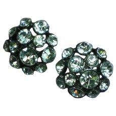 Rhinestones Crystal Japanned Pierced Earrings