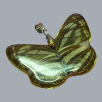 Butterfly Moth Encased Double Sided 18KGP Gold Plate Bail Necklace Pendant