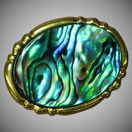 Abalone Shell Thick Gold Plate Brooch Pin