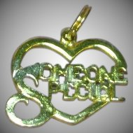 Sterling Silver Someone Special Charm Pendant